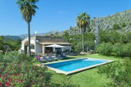 Зелёный сад. Испания, Польенса : Просторная вилла с верандой и цветущим садом с барбекю и столом для пинг-понга, с открытой парковкой и бассейном, 3 спальни, 2 ванные комнаты, Wi-Fi