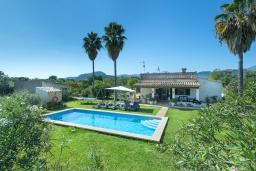 Территория. Испания, Польенса : Просторная вилла с верандой и цветущим садом с барбекю и столом для пинг-понга, с открытой парковкой и бассейном, 3 спальни, 2 ванные комнаты, Wi-Fi