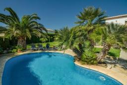 Бассейн. Испания, Гандия : Роскошная вилла с зеленым садом, бассейном и видом на море, 4 спальни, 3 ванные комнаты, парковка, Wi-Fi