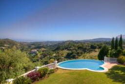 Бассейн. Испания, Марбелья : Изумительная семейная вилла с бассейном и зеленым садом, 5 спален, 6 ванных комнат, бильярд, камин, лифт, парковка, Wi-Fi