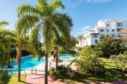 Вид на виллу/дом снаружи. Испания, Пуэрто Банус : Изысканные апартаменты расположены всего в квартале от пляжа. К услугам гостей открытый бассейн и казино.
