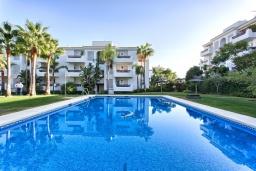 Бассейн. Испания, Эстепона : Прекрасная семейная квартира в красивом закрытом комплексе, 3 спальни, 2 ванные комнаты,бассейн