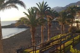 Пляж Ла-Арена в Санта-Крус-де-Тенерифе