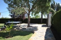 Развлечения и отдых на вилле. Испания, Малага : Роскошная вилла с тремя спальнями, потрясающим частным садом и бассейном.