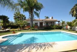 Бассейн. Испания, Малага : Роскошная вилла с тремя спальнями, потрясающим частным садом и бассейном.