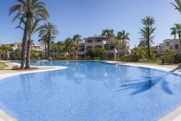 Территория. Испания, Новая Андалусия : Превосходные апартаменты расположены в городе Марбелья. К услугам гостей открытый бассейн, общий лаундж и круглосуточная стойка регистрации.