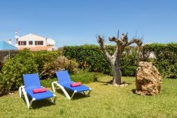 Зелёный сад. Испания, Менорка : Уединенная вилла, расположенная в небольшом тупике с садами, с потрясающим видом на море, 4 спальни,3 ванные комнаты,частный бассейн