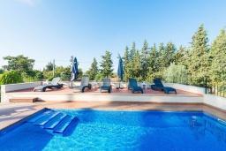 Бассейн. Испания, Порт де Алькудия : Прекрасная вилла с собственным бассейном и кондиционером в городе Льосета, в горах Трамунтана.