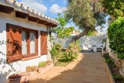 Зелёный сад. Испания, Менорка : Традиционная меноркинская вилла находится в 800 метрах от песчаного пляжа, частный бассейн, зона для барбекю и крытая терраса, 3 спальни, 2 ванные комнаты