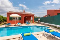 Бассейн. Испания, Менорка : Небольшая уютная вилла с частным басенном, зоной барбекю и террасой, 3 спальни, wi-fi, парковка