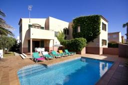 Бассейн. Испания, Менорка : Двухэтажная вилла для отпуска с 3 спальнями, 2 ванными комнатами, wi-fi, с балкона открывается потрясающий вид на море