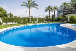 Бассейн. Испания, Марбелья : Апартаменты в комплексе с общим бассейном и тренажерным залом3-комнатная квартира в комплексе с общим бассейном и тренажерным залом