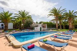 Бассейн. Испания, Менорка : Комфортабельный и светлый дом, полностью оборудованная кухня, две спальни, ванная комната, парковка, общий бассейн