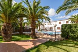 Зелёный сад. Испания, Менорка : Комфортабельный и светлый дом, полностью оборудованная кухня, две спальни, ванная комната, парковка, общий бассейн