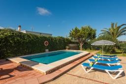 Бассейн. Испания, Менорка : Загородный дом , имеет очаровательный внешний вид, расположен в семейном районе в красивой сельской местности.