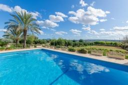 Бассейн. Испания, Кан-Пикафорт : Просторная семейная вилла с собственным бассейном и садом в городе Ариани