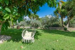 Развлечения и отдых на вилле. Испания, Кан-Пикафорт : Просторная семейная вилла с собственным бассейном и садом в городе Ариани