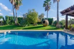 Бассейн. Испания, Кан-Пикафорт : Прекрасная вилла с частным бассейном и просторным садом в центре города Инка, рядом с горами Трамунтана