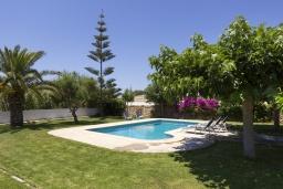 Зелёный сад. Испания, Менорка : Красивый загородный дом с большим садом и газоном, бассейном и крытой террасой