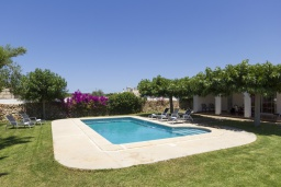 Бассейн. Испания, Менорка : Красивый загородный дом с большим садом и газоном, бассейном и крытой террасой