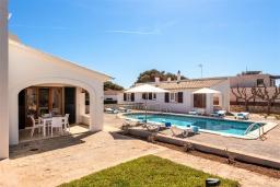 Зона отдыха у бассейна. Испания, Менорка : Апартаменты для 4 человек с прямым доступом к морю по частной тропе! Терраса, общий бассейн, спальня, wi-fi