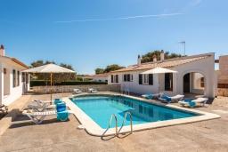 Бассейн. Испания, Менорка : Небольшие уютные апартаменты с прямым доступом к морю, бесплатная парковка, магазин в двух шагах, одна спальня, гостиная/столовая, ванная комната, wi-fi