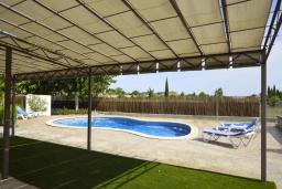 Бассейн. Испания, Кан-Пикафорт : Тихая и ухоженная вилла с садом и бассейном в городе Льорет де Висталегре