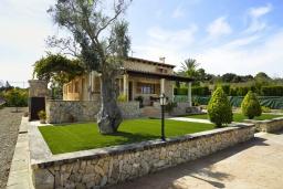 Вид на виллу/дом снаружи. Испания, Кан-Пикафорт : Тихая и ухоженная вилла с садом и бассейном в городе Льорет де Висталегре