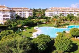 Территория. Испания, Новая Андалусия : Уютные апартаменты расположены рядом с пляжем в городе Марбелья. Имеется Wi-Fi, кондиционер, открытый бассейн и шикарный сад.