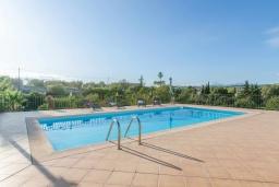 Бассейн. Испания, Кан-Пикафорт : Красивая вилла с собственным бассейном недалеко от города Синеу и пляжа Кан-Пикафорт