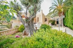 Зелёный сад. Испания, Мораира : Привлекательная вилла в арабском стиле расположенная в тихом жилом районе на склоне холма, 2 спальни, 2 ванные комнаты, частный бассейн, WIFI