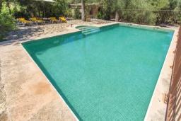 Бассейн. Испания, Кала Миллор : Красивое каменное поместье с частным бассейном и большой террасой, окруженное природой и спокойствием недалеко от Каньямеля