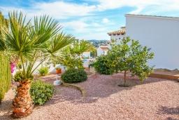 Зелёный сад. Испания, Мораира : Красивая вилла расположенная в тихом жилом районе на склоне холма, 2 спальни, 2 ванные комнаты, частный бассейн,WIFI