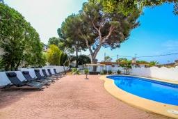 Бассейн. Испания, Эль-Портет : Ухоженная вилла в тихом месте, частный бассейн, 3 спальни, ванная комната