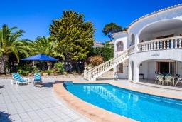 Бассейн. Испания, Мораира : Уютная вилла расположенная на тупиковой улице недалеко от центра, частный бассейн, 1 спальня, 1 ванная комната