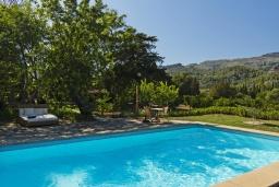 Бассейн. Испания, Польенса : Вилла в традиционном испанском стиле, с 3 спальнями, 3 ванными комнатами и собственным бассейном.