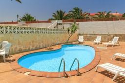 Бассейн. Испания, Фуэртевентура : Солнечная вилла на острове Фуэртевентура на берегу моря, может вместить до 5 человек с 3 спальнями, 2 ванными комнатами, а также отдельным бассейном с подогревом
