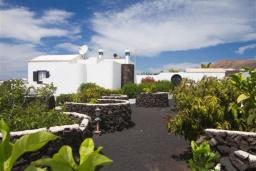 Зелёный сад. Испания, Лансароте : Уютная современная вилла на испанском острове Лансароте может вместить до 6 человек с 3 спальнями, 3 ванными комнатами, а также отдельным бассейном с подогревом и видом на море