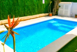 Бассейн. Испания, Порт де Алькудия : Красивая вилла для отдыха расположенная на испанском острове Майорка, с 3 спальнями, 1 ванной комнатой и собственным бассейном.