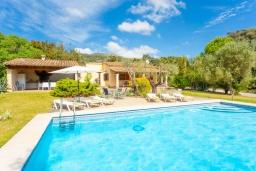 Бассейн. Испания, Польенса : Очаровательная вилла на испанском острове Майорка, с частным бассейном и видом на горы, 3 спальни, 2 ванные комнаты, Wi-Fi