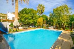 Бассейн. Испания, Нерха : Красивая вилла окружённая густой растительностью с 3 спальнями, 3 ванными комнатами, частным бассейном и видом на горы.