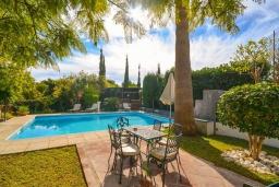 Зона отдыха у бассейна. Испания, Нерха : Красивая вилла окружённая густой растительностью с 3 спальнями, 3 ванными комнатами, частным бассейном и видом на горы.