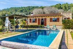 Бассейн. Испания, Алькудия : Уютная небольшая вилла для отдыха на испанском острове Майорка, с 2 спальнями, 1 ванной комнатой и собственным бассейном.