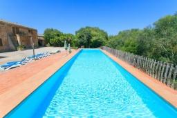 Бассейн. Испания, Са Рапита : Вилла в деревенском стиле на испанском острове Майорка, с 6 спальнями, 3 ванными комнатами и большим частным бассейном