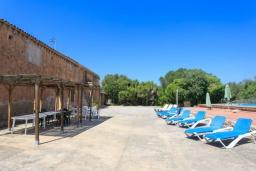 Зона отдыха у бассейна. Испания, Са Рапита : Вилла в деревенском стиле на испанском острове Майорка, с 6 спальнями, 3 ванными комнатами и большим частным бассейном