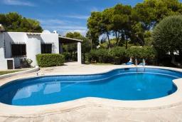 Бассейн. Испания, Кала-д'Ор : Просторная уютная вилла  для отдыха на испанском острове Майорка, и может вместить до 6 человек с 3 спальнями, 2 ванными комнатами и собственным бассейном