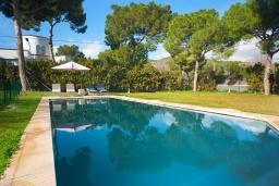 Бассейн. Испания, Пальманова : Роскошная вилла с большим бассейном и зеленой территорией, 5 спален, 3 ванные комнаты, парковка, Wi-Fi