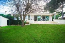 Фасад дома. Испания, Пальманова : Роскошная вилла с большим бассейном и зеленой территорией, 5 спален, 3 ванные комнаты, парковка, Wi-Fi
