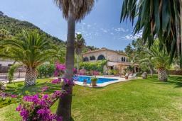 Зелёный сад. Испания, Польенса : Просторная вилла окружённая красивым садом с видом на горы, 4 спальнями, 3 ванными комнатами и собственным бассейном