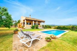 Бассейн. Испания, Алькудия : Уединенная вилла с красивым садом, частным бассейном, 2 спальнями, 1 ванной комнатой, бесплатный, Wi-Fi